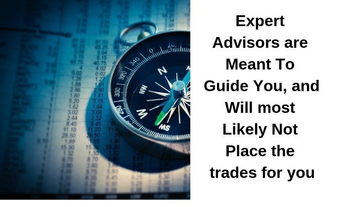 Expert Advisors in forex trading by theforexprogrammer