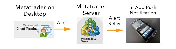 How to setup meta trader for push notification